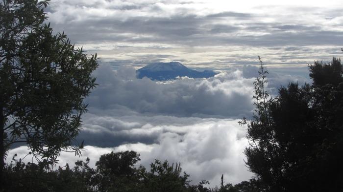 kilimanjaro-279999_960_720