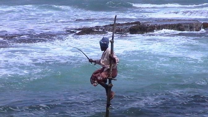 fishing-94998_960_720