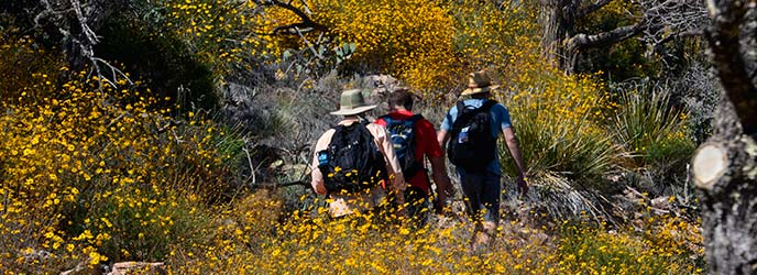 hikers-emory-peak-trail-01_cballou_1