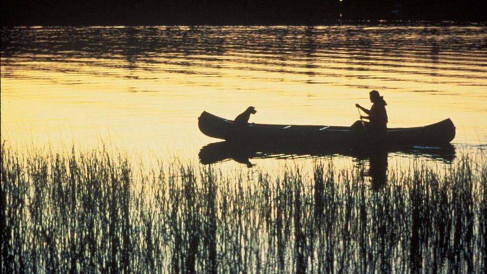 canoe-703818_960_720.jpg
