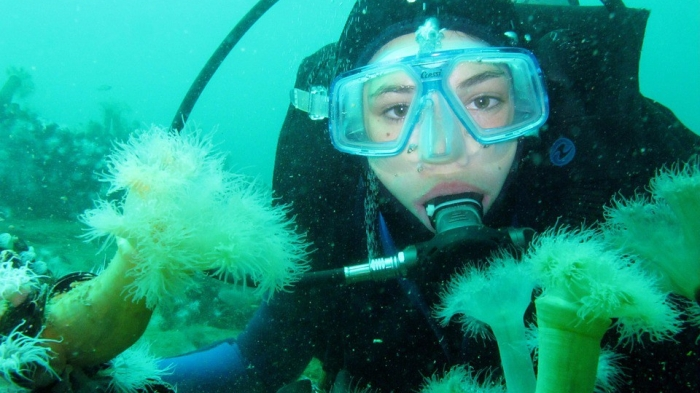 scuba diver with mask and regulator peering at undersea life on a reef