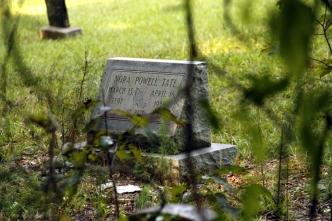 gravestone in tall grass