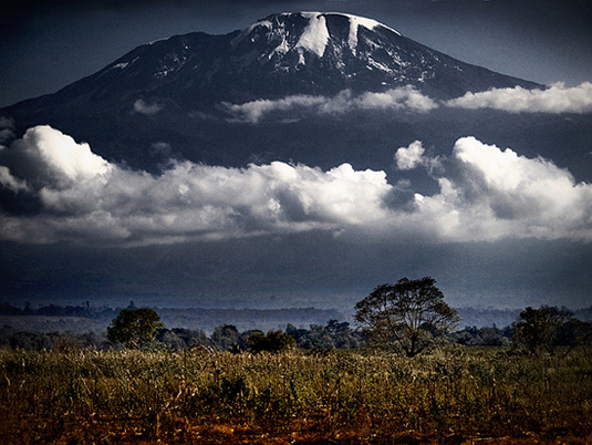 Kilimanjaro seen above the Serengeti