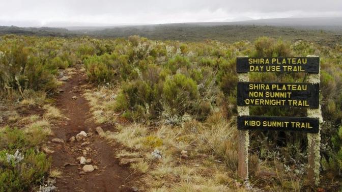 shira-plateau-kilimanjaro_1366302_l.jpg