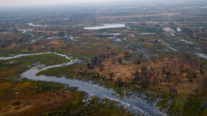 Okavango_Delta
