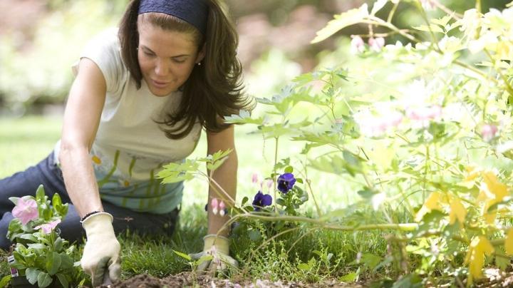 16338-a-woman-enjoying-gardening-outdoors-pv