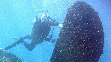 450px-Reef3661_-_Flickr_-_NOAA_Photo_Library.jpg