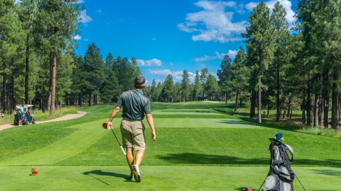 golfer_golf_course_golfing_player_male-1201237